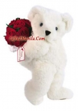 Red Rose Bouquet and white Bear