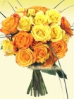 Orange and Yelllow rose