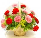 Carnations in basket