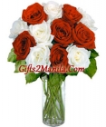 12 Red & White  Stem Roses