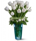 White Tulip In Vase