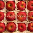 Fuji Apple Gift Box